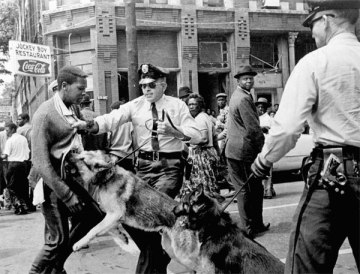 Police in Birmingham, Alabama release dogs on African-American street protesters
