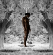 American visual artist Ayana V. Jackson depicts the lynching of an African-American in this work
