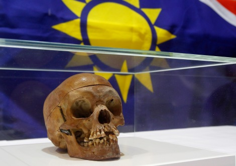 A human skull from the Herero and ethnic Nama people is displayed during a ceremony in the auditorium of Berlin's Charite hospital September 30, 2011. The hospital is returning 20 human skulls to Namibia, which were taken from victims of the Herero and Nama tribes, who died at the hands of German colonial forces during the resistance war in Namibia between 1904 and 190. The Namibian skulls were were sent to Berlin, a hub at the outset of the 20th century for anthropological research, for racial analysis, according to Charitie's research. Many skulls are still stored at the Medical History Museum at the teaching hospital in Berlin. REUTERS/Tobias Schwarz (POLITICS RELIGION)
